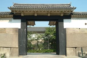 大阪城大手門の写真素材 [FYI00315862]