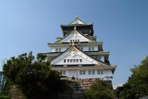 大阪城天守閣の写真素材 [FYI00315872]