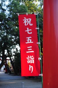 七五三詣り-3の写真素材 [FYI00315931]