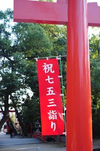 七五三詣り-2の写真素材 [FYI00315932]