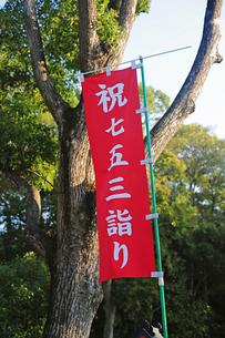 七五三詣り-1の写真素材 [FYI00315934]