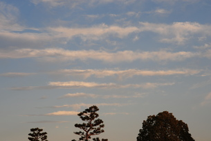 冬の筋雲の写真素材 [FYI00315983]