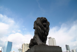 難波橋のライオン像-2の写真素材 [FYI00316052]