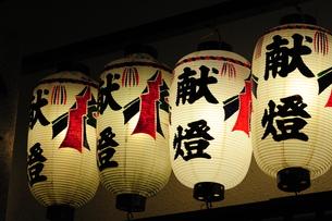 神社の御神燈-9の写真素材 [FYI00316105]