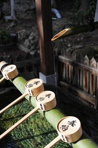 神社の手水舎-6の写真素材 [FYI00316121]