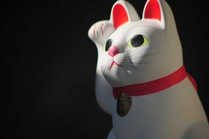 招き猫の横顔の素材 [FYI00316152]