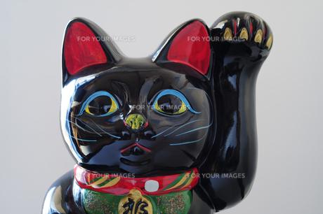 黒招き猫-2の素材 [FYI00316160]