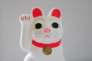 招き猫正面の素材 [FYI00316164]