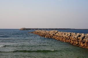 海岸の堤防とテトラポット-1の写真素材 [FYI00316247]