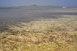 備瀬の浜から伊江島を望む-5の写真素材 [FYI00316337]