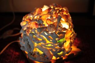 貝殻と珊瑚の照明器具の写真素材 [FYI00316352]