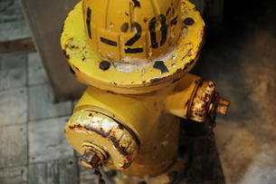 黄色い消火栓の写真素材 [FYI00316360]