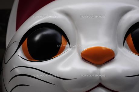 巨大招き猫の写真素材 [FYI00316478]