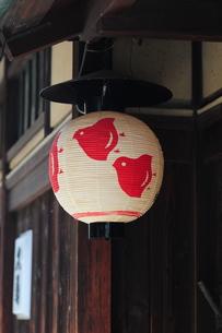 先斗町のお茶屋-1の写真素材 [FYI00316608]
