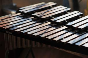 音楽室の木琴の写真素材 [FYI00316683]