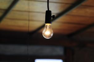 裸電球-10の写真素材 [FYI00316692]