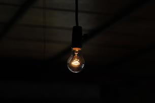 裸電球-11の写真素材 [FYI00316693]