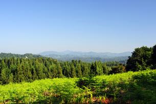 松之山温泉郷からの眺めの写真素材 [FYI00316712]