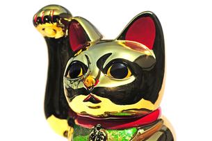 金の招き猫の素材 [FYI00316763]