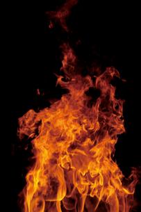 炎1の写真素材 [FYI00316889]