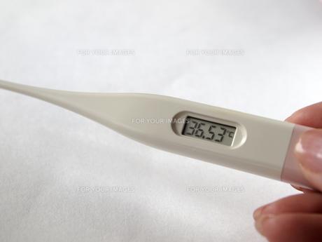 体温計の写真素材 [FYI00317062]