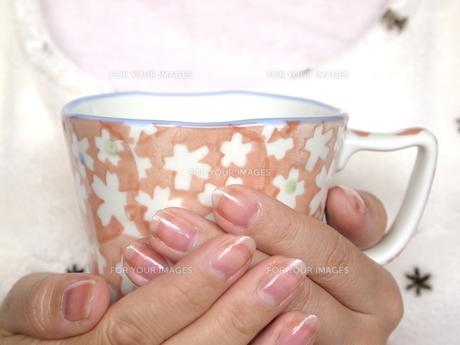 マグカップを持つ手の写真素材 [FYI00317123]