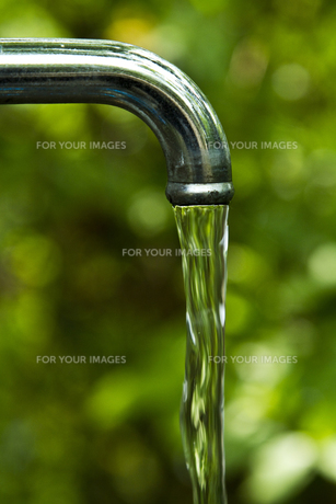 蛇口と水流と木漏れ日の写真素材 [FYI00317350]