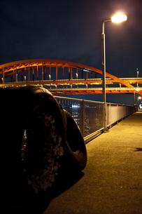橋の写真素材 [FYI00317398]