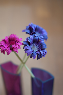 生命感のある造花の素材 [FYI00318250]