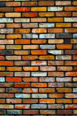 カラフルなレンガの壁の写真素材 [FYI00318251]