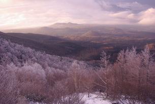 二つの季節のある森の写真素材 [FYI00318981]