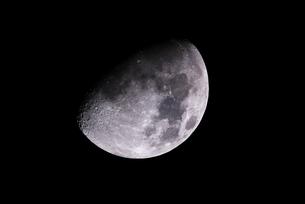 晩秋の月の写真素材 [FYI00318993]