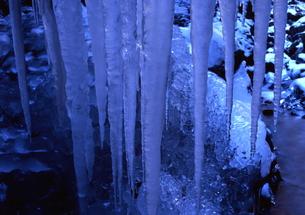 渓谷に連なる太い氷柱の素材 [FYI00319087]