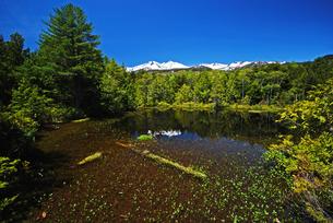 牛留池から乗鞍岳を望むの写真素材 [FYI00319386]