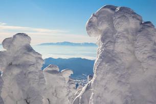 樹氷の写真素材 [FYI00319431]