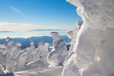 蔵王樹氷の写真素材 [FYI00319432]