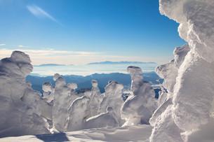 樹氷の写真素材 [FYI00319459]