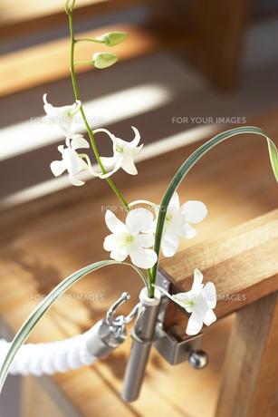 教会の飾り花の素材 [FYI00319982]