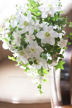飾り花の写真素材 [FYI00320000]
