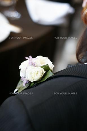飾り花の写真素材 [FYI00320001]
