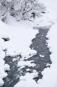 冬景色の写真素材 [FYI00320486]