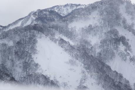 雪山の素材 [FYI00320491]