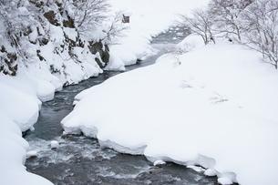 冬景色の写真素材 [FYI00320501]