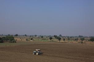 インドの畑の耕作の写真素材 [FYI00321163]