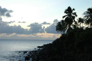 ハワイのビーチの夕景の写真素材 [FYI00321429]