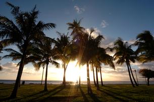 夕焼けのビーチ(ハワイ オアフ島 / カピオラニ公園)の写真素材 [FYI00321442]