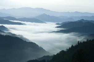 高野山の雲海の写真素材 [FYI00321452]