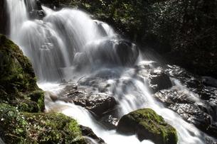 勢いのある滝の写真素材 [FYI00321619]