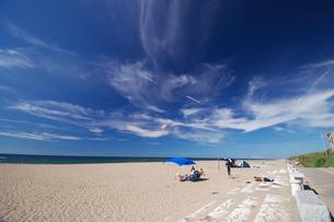 夏休みの海岸の写真素材 [FYI00321627]