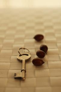 鍵の素材 [FYI00321662]
